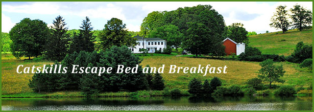 A Catskills Escape Bed and Breakfast